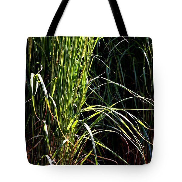 Tote Bag featuring the photograph Yellow And Green And Red Leaves  by Lyle Crump