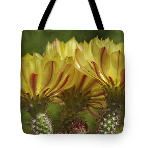 Yellow And Red Cactus Flowers Tote Bag