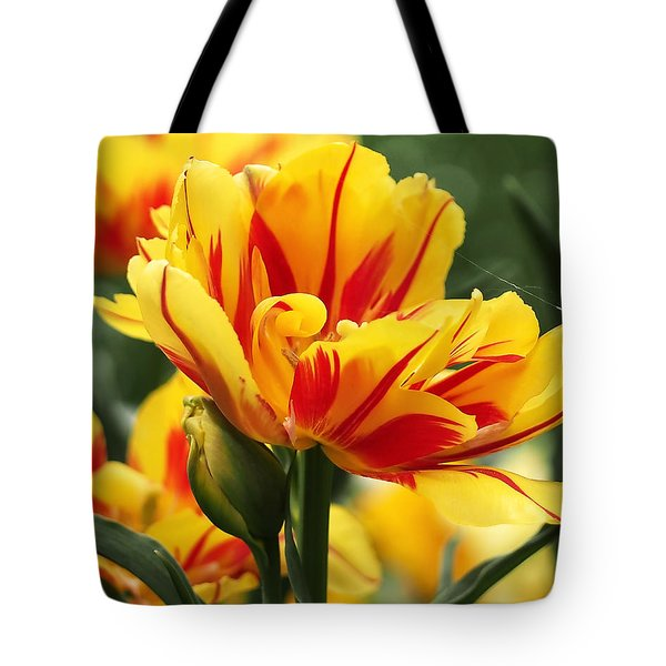 Tote Bag featuring the photograph Yellow And Red Triumph Tulips by Rona Black