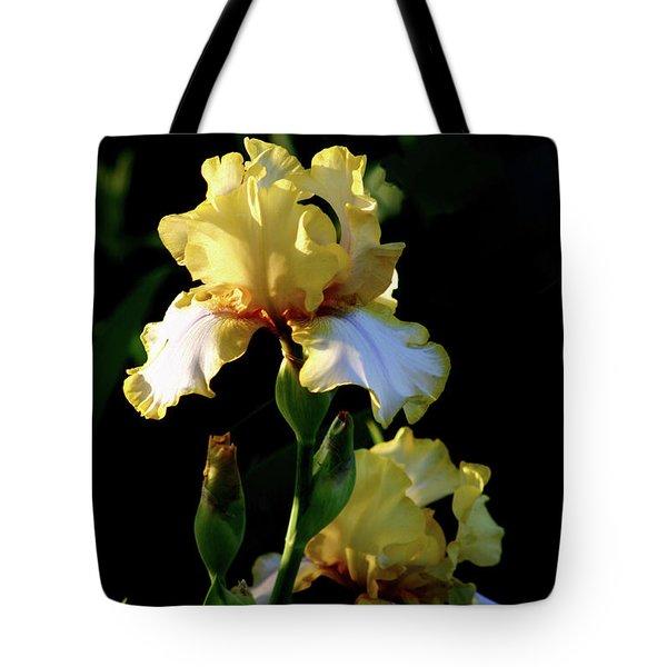 Yellow And White Irises 6681 H_2 Tote Bag
