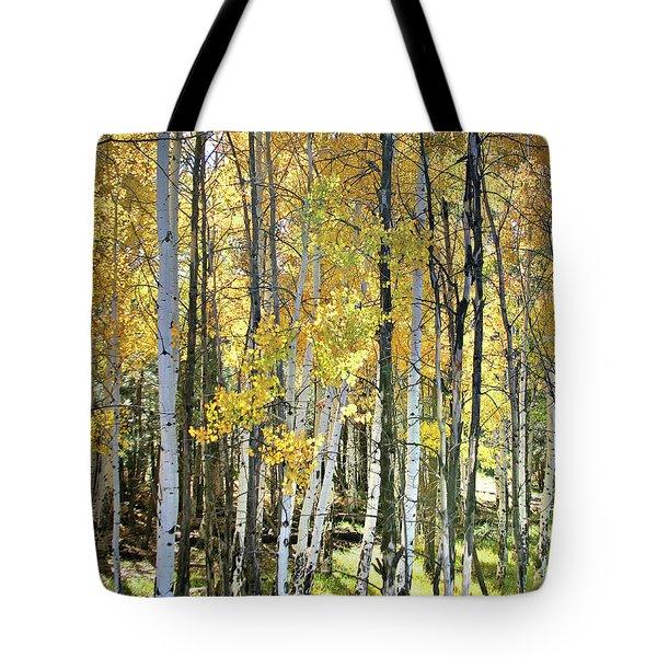 Yellow Aspens Tote Bag
