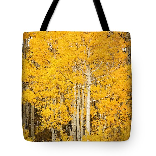 Yellow Aspens Tote Bag by Ron Dahlquist - Printscapes
