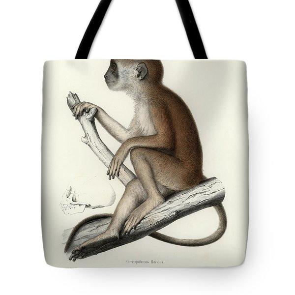 Yellow Baboon, Papio Cynocephalus Tote Bag