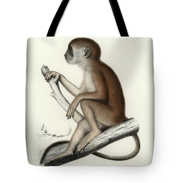 Yellow Baboon, Papio Cynocephalus Tote Bag by J D L Franz Wagner