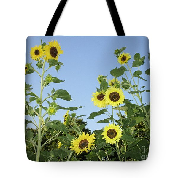 Yellow Beauties Tote Bag by Charlotte Gray