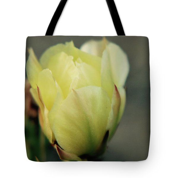 Tote Bag featuring the photograph Yellow Beauty by Amee Cave