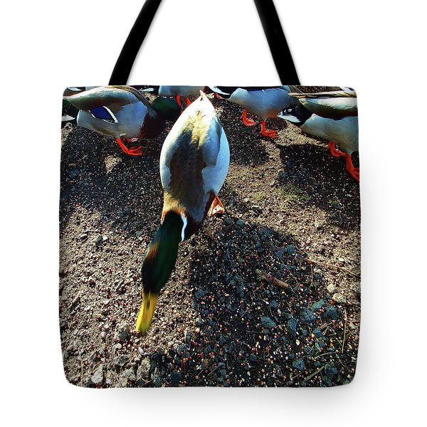 Tote Bag featuring the photograph yellow Billed Duck Feeding by Roger Bester