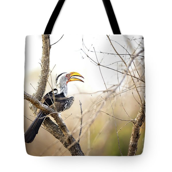 Yellow-billed Hornbill Sitting In A Tree.  Tote Bag