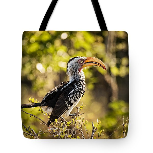 Tote Bag featuring the photograph Yellow-billed Hornbill by Stefan Nielsen