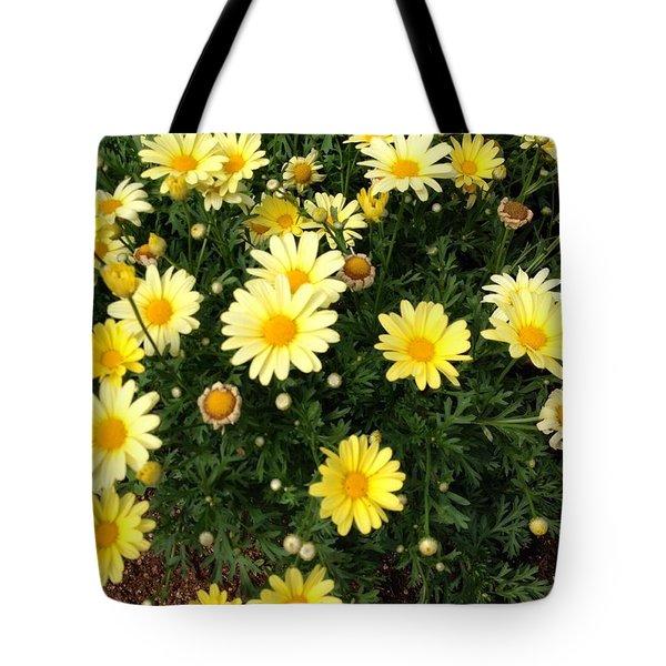 Yellow Buds Tote Bag by Alohi Fujimoto