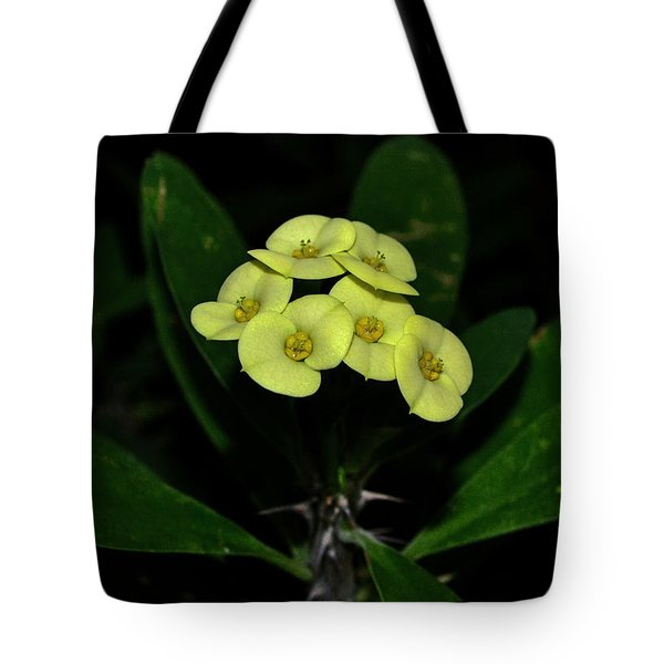 Tote Bag featuring the photograph Yellow Cactus Flowers 001 by George Bostian