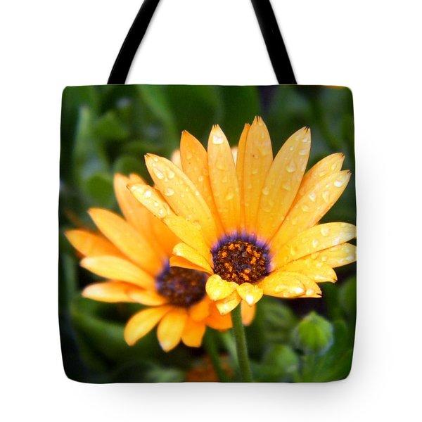 Yellow Colored Petals Tote Bag