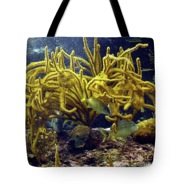 Tote Bag featuring the photograph Yellow Coral Dance by Francesca Mackenney