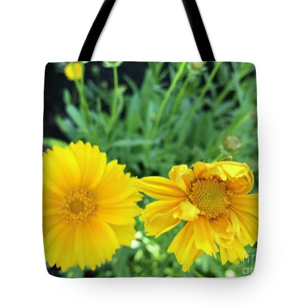 Yellow Coreopis Tote Bag