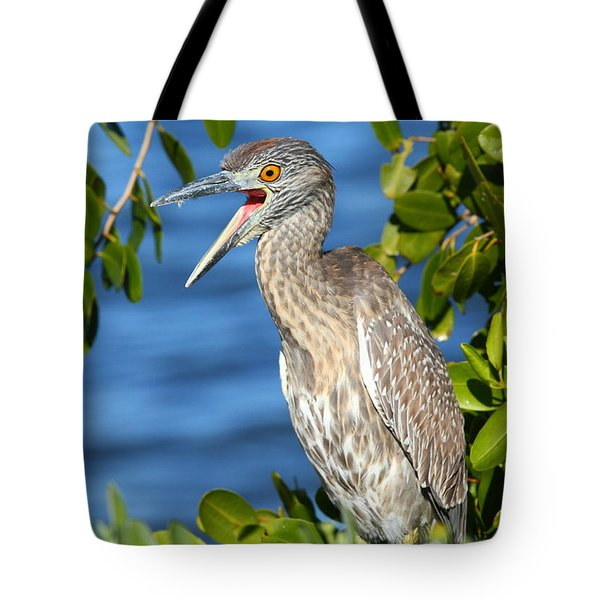 Tote Bag featuring the photograph Yellow-crowned Night Heron by Jennifer Zelik