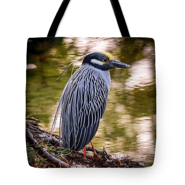 Tote Bag featuring the photograph Yellow-crowned Night-heron by Steven Sparks