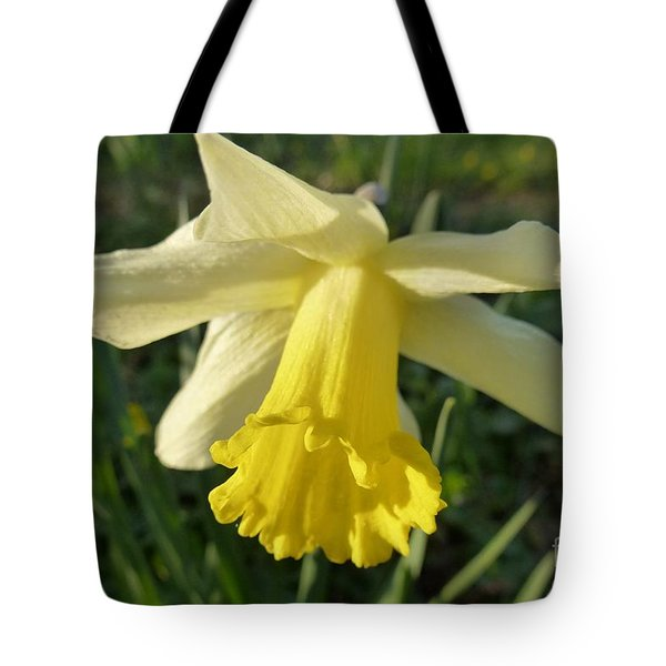 Yellow Daffodil 2 Tote Bag by Jean Bernard Roussilhe