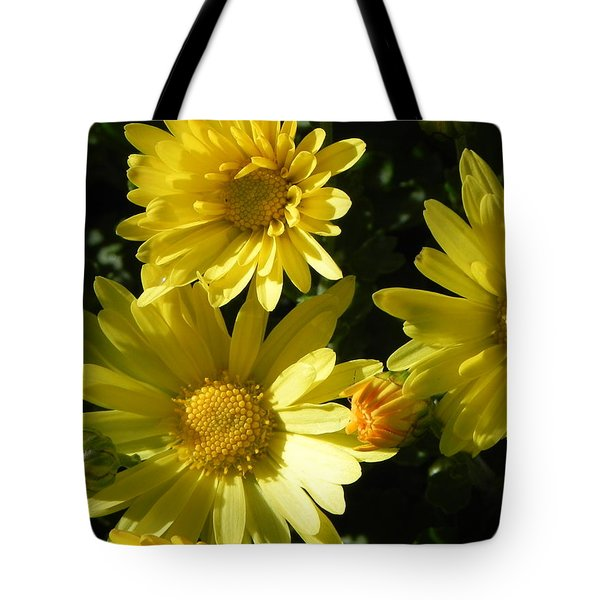 Yellow Daisies Tote Bag by John Parry