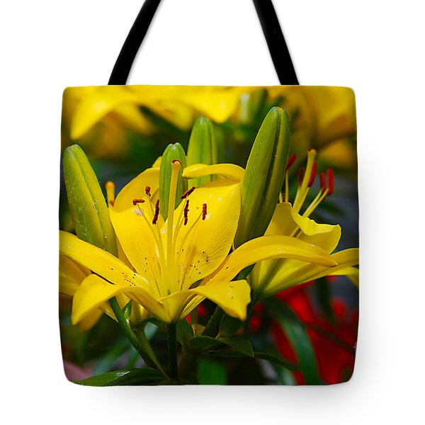 Yellow Day Lily 20120614_55a Tote Bag