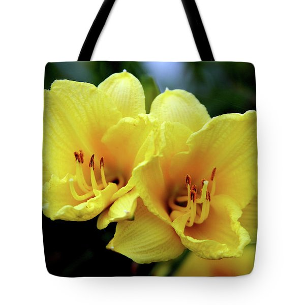 Yellow Daylilly 0204 H_2 Tote Bag