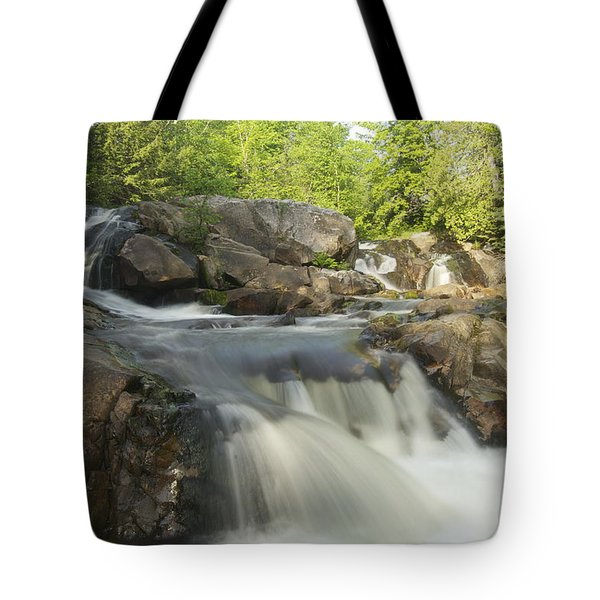 Yellow Dog Falls 3 Tote Bag by Michael Peychich