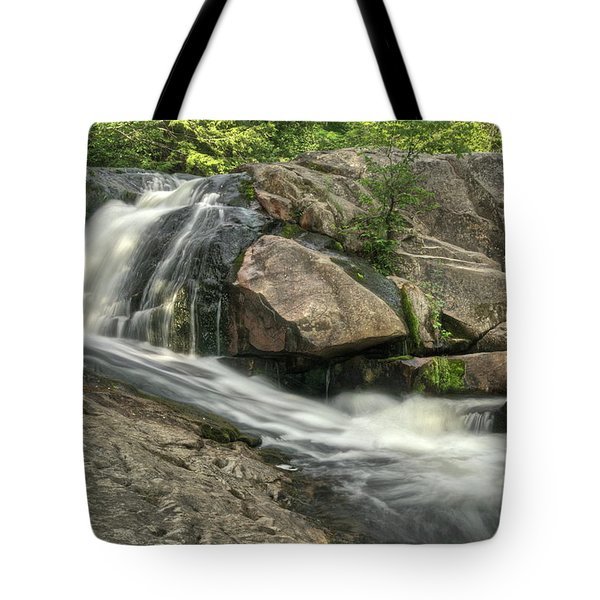Yellow Dog Falls 4 Tote Bag by Michael Peychich