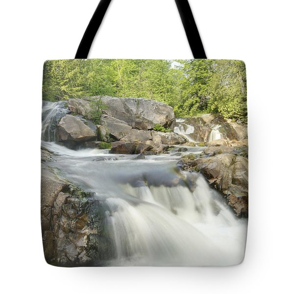 Yellow Dog Falls 4234 Tote Bag by Michael Peychich