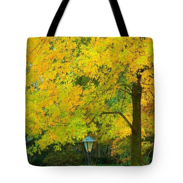 Yellow Drapes Tote Bag