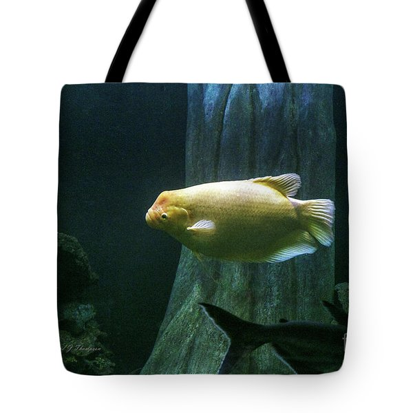 Tote Bag featuring the photograph Yellow Fish In Tank by Richard J Thompson