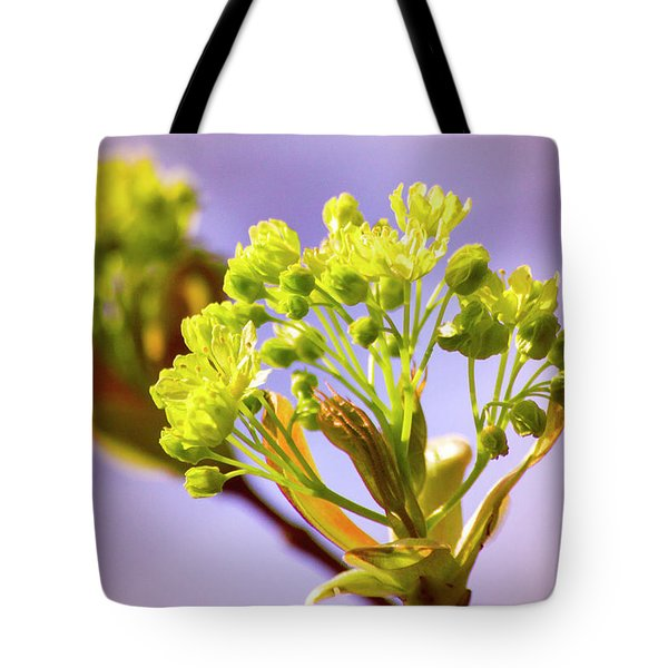 Yellow Flower Close Up Tote Bag