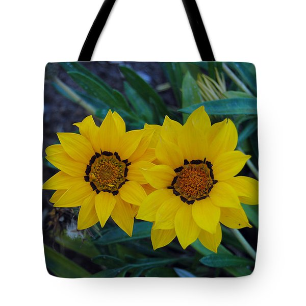 Gazania Rigens - Treasure Flower Tote Bag