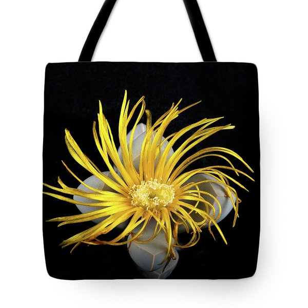 Tote Bag featuring the photograph Yellow Follower  by Catherine Lau