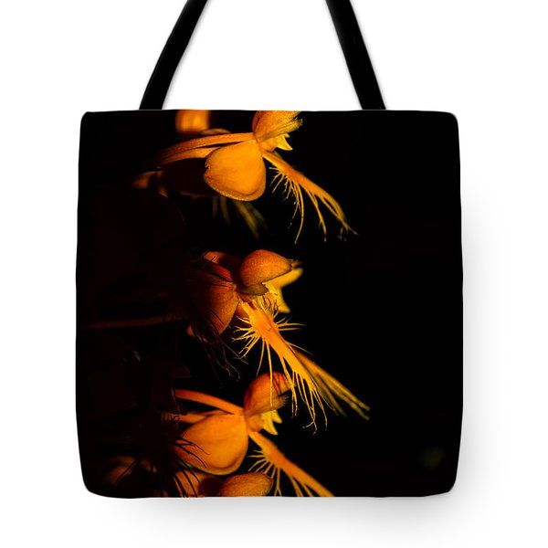 Tote Bag featuring the photograph Yellow-fringe Orchid by Barbara Bowen