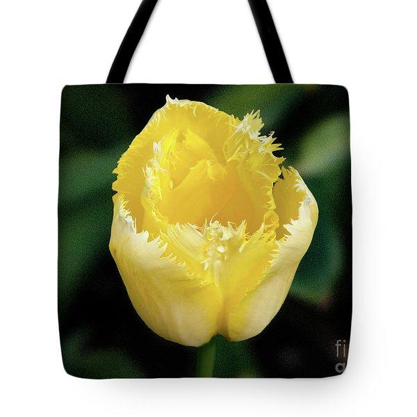 Yellow Fringe Tulip Tote Bag