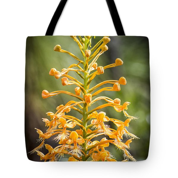 Yellow Fringed Orchid Tote Bag
