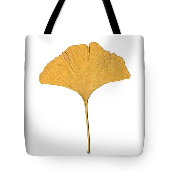 Yellow Ginkgo Leaf Tote Bag by Renee Trenholm
