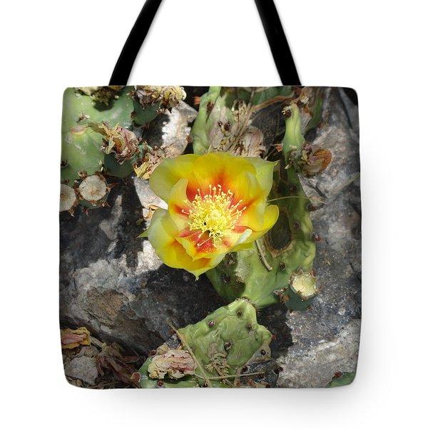 Yellow Cactus Flower Blossom Tote Bag