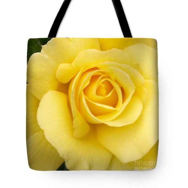 Yellow Gold Tote Bag by Sandy Molinaro
