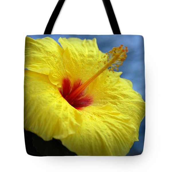 Tote Bag featuring the photograph Yellow Hibiscus by Debbie Karnes