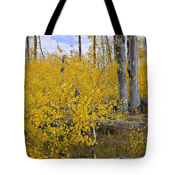Tote Bag featuring the photograph Yellow In Grand Teton by Ken Barrett