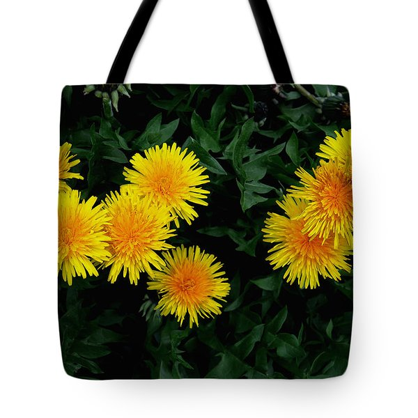 Tote Bag featuring the photograph Yellow In Green by Dorin Adrian Berbier