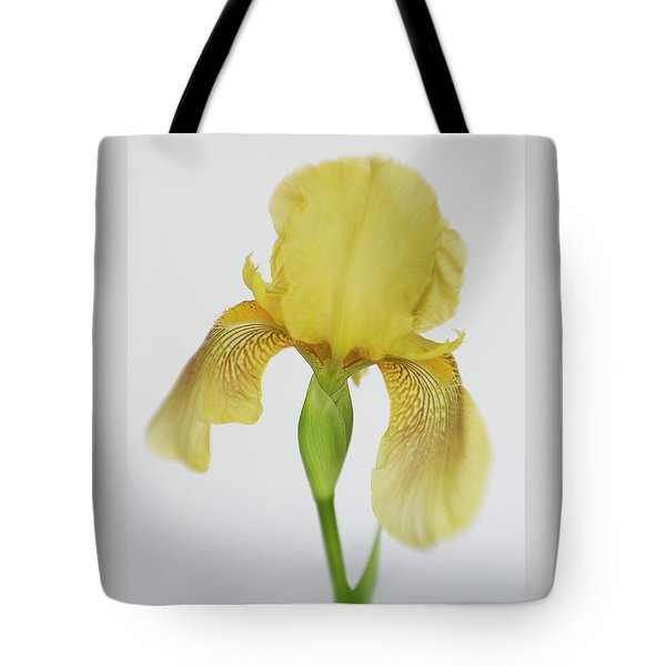 Tote Bag featuring the photograph Yellow Iris A Symbol Of Passion by David and Carol Kelly