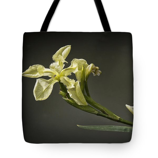 Yellow Iris Tote Bag by Shirley Mitchell