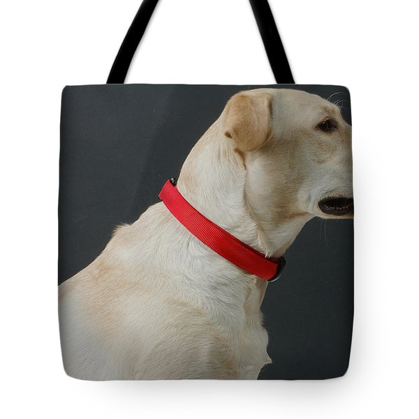Yellow Lab Tote Bag by Jerry McElroy