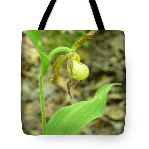 Tote Bag featuring the photograph Yellow Lady-slipper by Linda Geiger