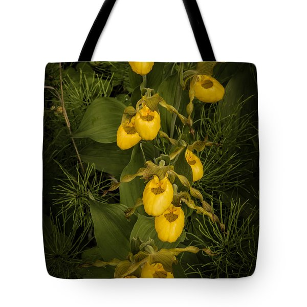 Yellow Lady Slippers Tote Bag