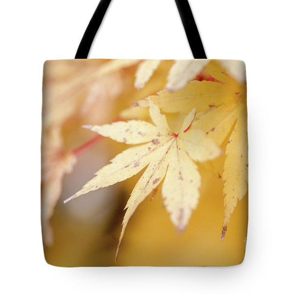 Yellow Leaf With Red Veins Tote Bag