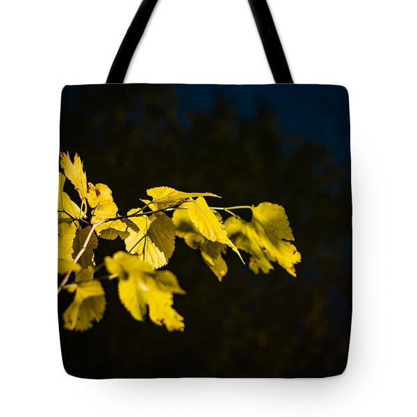 Tote Bag featuring the photograph Yellow Leaves by Randy Bayne