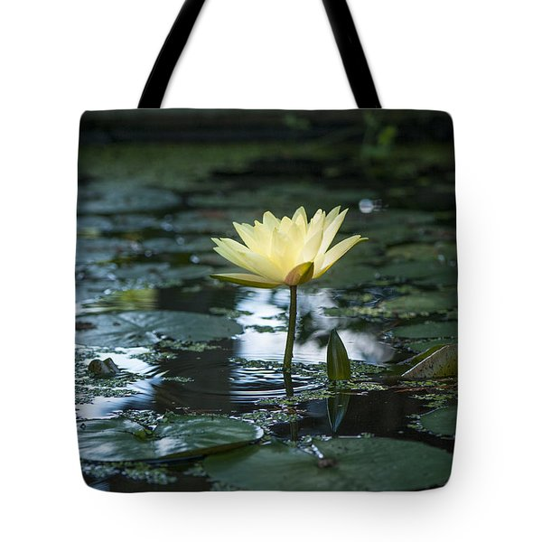 Yellow Lilly Tranquility Tote Bag