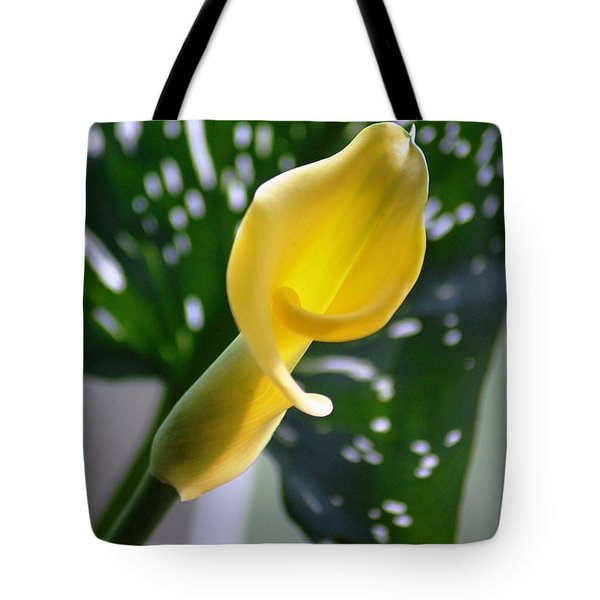 Tote Bag featuring the photograph Yellow Mini Calla Lilies by Donna Bentley